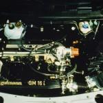 Gutmann engine